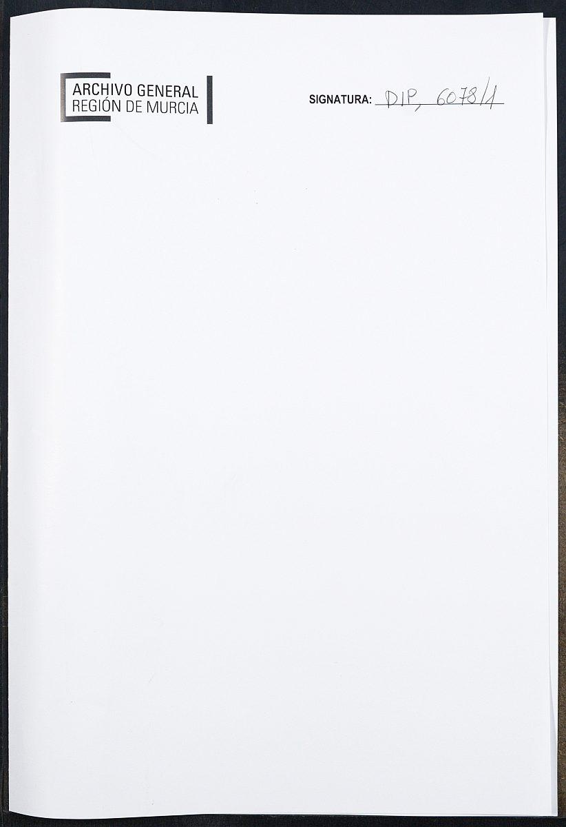 Haz click para mostrar el visor de imágenes